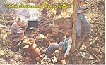 Hillbilly Business Man Postcard p16218 1973