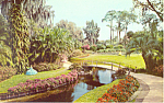 Cypress Gardens,FL, Walkways Belles Postcard