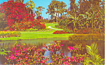 Click here to enlarge image and see more about item p16404: Cypress Gardens  FL Colorful Fairyland Postcard p16404