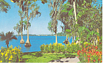 Cypress Gardens  FL Colorful Flowers Postcard p16405