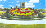 Click here to enlarge image and see more about item p16408: Niagara Falls Canada Floral Clock Postcard