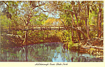 Hillsborough River State Park Florida Postcard p16435