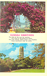 Click here to enlarge image and see more about item p16441: Lake Wales Bok Tower Florida  Postcard p16441
