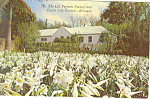 Click here to enlarge image and see more about item p16512: Lily Perfume Factory,Bermuda Postcard 1998