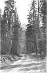 Click here to enlarge image and see more about item p1653: Cody Road to Yellowstone  Photo