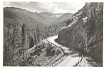 Click here to enlarge image and see more about item p1654: Sylvan Pass Cody Road to Yellowstone  Photo