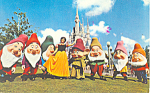 Snow  White Seven Dwarfs Disney World   Postcard p16664