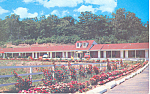 Geo Washington Bridge Motel Fort Lee  NJ Postcard p16786