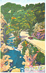 Road to Alum Rock Park, San Jose, CA Postcard