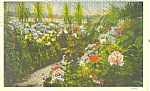 Click here to enlarge image and see more about item p16847: Horticulturial Building Belle Isle Detroit MI Postcard p16847 1927