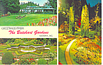 Click here to enlarge image and see more about item p16854: Butchart Gardens, BC , Canada Postcard 1972