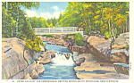 Click here to enlarge image and see more about item p17036: Falls Ammonoosuc Bretton Woods  NH Postcard p17036