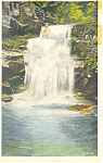 Cold Brook Falls, White Mountains,NH Postcard