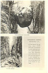 Suspended Boulder Franconia Notch NH  Postcard p17081
