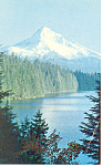 Mt Hood, Oregon Postcard