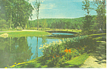 Click here to enlarge image and see more about item p17216: Sterling Forest Gardens Tuxedo NY  Postcard p17216