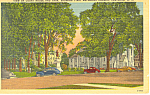 Court House and Park Cortland  NY Postcard p17298 1948