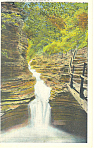Click here to enlarge image and see more about item p17342: Sylvan Rapids Watkins Glen NY  Postcard p17342