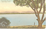 Catskill Mountains Hudson River NY  Postcard p17412