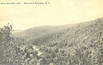 Scene Near Star Lake Adirondacks NY  Postcard p17419