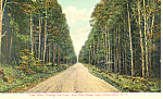 Lake Drive Cooperstown NY Postcard p17450