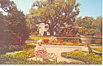 Click here to enlarge image and see more about item p17536: Orton Plantation  NC Postcard p17536