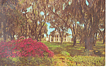 A Beautiful Southern Plantation  NC Postcard p17537