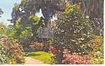 Azalea Paths Orton Plantation NC Postcard p17566
