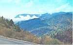 Newfound Gap Smoky Mountains National Park NC Postcard p17617