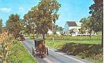 Amish Buggy, Ephrata PA Postcard