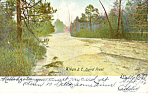 Click here to enlarge image and see more about item p17846: Aiken, SC Sand River Postcard 1908