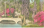 Click here to enlarge image and see more about item p17851: Magnolia Gardens Charleston SC Postcard p17851