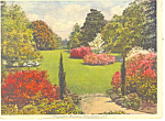 Click here to enlarge image and see more about item p17858: Magnolia Gardens Charleston SC Postcard p17858