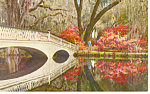 Click here to enlarge image and see more about item p17881: Magnolia Gardens,SC  Postcard
