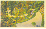 Double Spirals Black Hills  SD  Postcard p17921