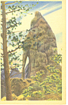 Click here to enlarge image and see more about item p17922: Needles Eye, Black Hills , SD  Postcard