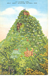 Chimney Tops Smoky Mountains National Park TN Postcard p17999