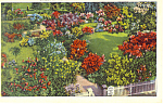 Garden at The Hermitage ,TN Postcard