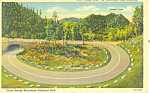 Loop Over on  Newfound Gap Highway ,TN Postcard