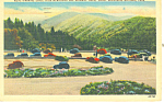 Parking Space Newfound Gap ,TN Postcard