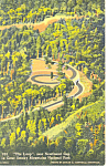Loop near  Newfound Gap ,TN Postcard 1939