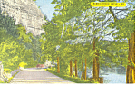River Drive,New Braunfels,Texas Postcard