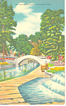 Click here to enlarge image and see more about item p18071: San Antonio River San Antonio Texas Postcard p18071