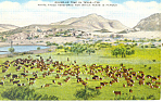 Click here to enlarge image and see more about item p18090: Roundup Time in Texas Postcard