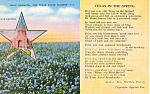 Words to Texas in The Spring by Parrish Postcard p18105