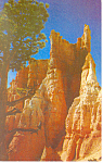 Click here to enlarge image and see more about item p18136: Bryce Canyon National Park UT Postcard