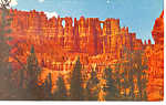 Click here to enlarge image and see more about item p18141: Wall of Windows Bryce Canyon National Park UT Postcard p18141
