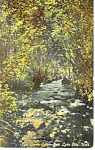 City Creek Canyon, Salt Lake City UT Postcard