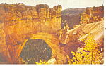 Click here to enlarge image and see more about item p18151: Natural Bridge,Bryce Canyon National Park UT Postcard