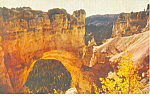 Click here to enlarge image and see more about item p18153: Natural Bridge,Bryce Canyon National Park UT Postcard